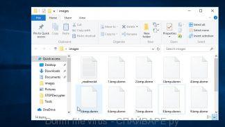 Domn file virus
