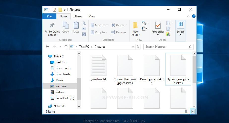 Encrypted .cosakos files