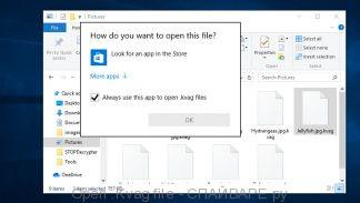 Open .Kvag file