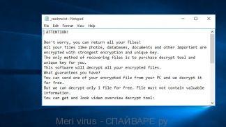 Merl virus