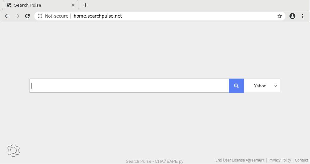 Search Pulse