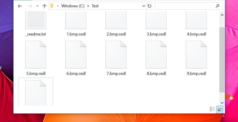 redl file virus